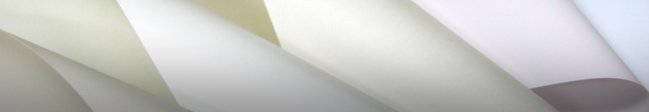 NCR Paper* Brand Specialties