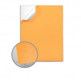 Label Paper: Printable Labels, Self-Adhesive Labels