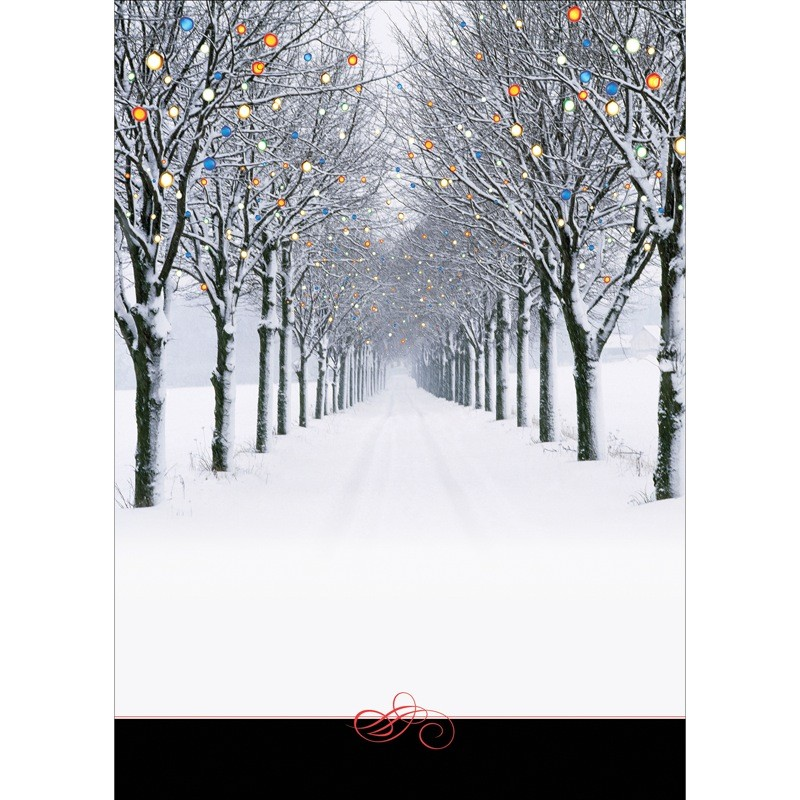 Winter Scene Of Road And Trees Front Imprint Cards From