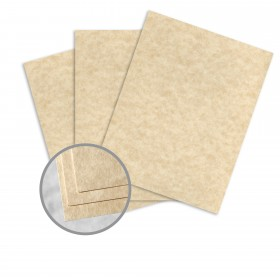 Astroparche Aged Card Stock - 23 x 35 in 65 lb Cover Vellum  30% Recycled 500 per Carton