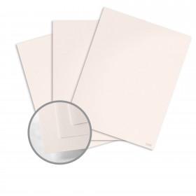 Construction Insulation Pink Card Stock - 26 x 40 in 80 lb Cover Vellum  500 per Carton