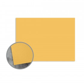 Flavours Gourmet Carmelized Mustard Flat Cards - A2 (4 1/4 x 5 1/2) 12 pt Cover Smooth 25 per Box