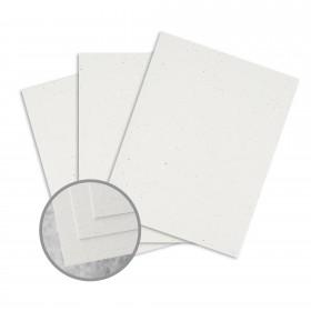 Loop Antique Vellum Birch Card Stock - 26 x 40 in 80 lb Cover Antique Vellum  100% Recycled 500 per Carton