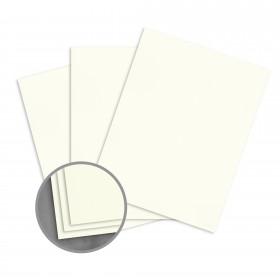 Loop Feltmark Ivory Card Stock - 26 x 40 in 130 lb Cover Feltmark  100% Recycled 250 per Carton