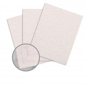 Parchtone Natural Card Stock - 26 x 40 in 80 lb Cover Semi-Vellum 500 per Carton