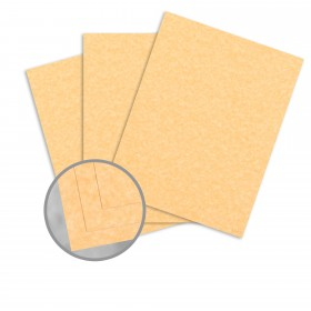 Parchtone Relic Gold Card Stock - 8 1/2 x 11 in 65 lb Cover Semi-Vellum 250 per Package