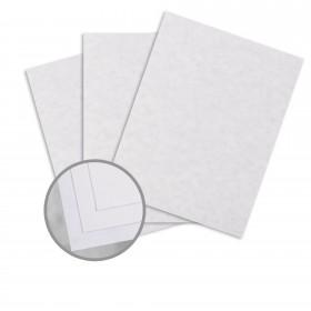 Parchtone White Card Stock - 26 x 40 in 80 lb Cover Semi-Vellum 500 per Carton