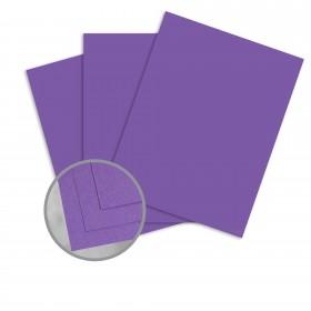 Pop-Tone Grape Jelly Card Stock - 26 x 40 in 100 lb Cover Vellum 250 per Carton