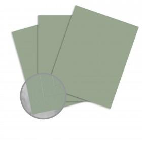 Via Vellum Pine Card Stock - 26 x 40 in 80 lb Cover Vellum  30% Recycled 400 per Carton