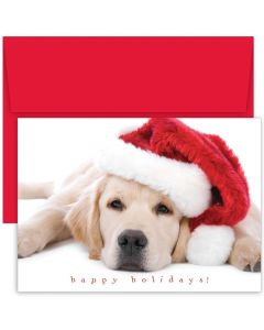 Santa Puppy Cards from the Fine Impressions Holiday Collection.