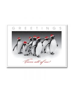 Penguins - From All Of Us Cards from the Fine Impressions Blank Holiday Cards Collection.