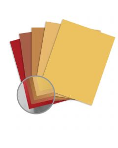 ColorMates Smooth & Silky Warm Assortment Card Stock - 8 1/2 x 11 in 80 lb Cover Smooth 25 per Package