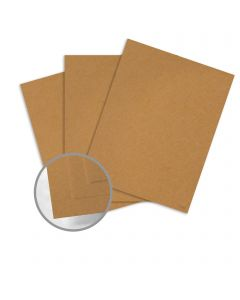Construction Safety Orange Card Stock - 26 x 40 in 80 lb Cover Vellum  100% Recycled 500 per Carton