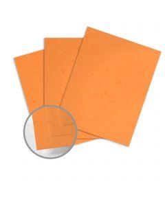 Dur-O-Tone Butcher Orange Card Stock - 26 x 40 in 80 lb Cover Smooth  100% Recycled 500 per Carton