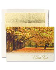 Covered in Thanks Cards from the Fine Impressions Blank Thanksgiving Cards Collection.