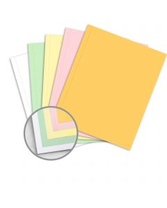 NCR Paper* Brand Superior Perf Multi-Colored Carbonless Paper - 9 x 11 in 21.4 lb Writing  Precollated 5-Part RS Goldenrod, Pink, Canary, Green, White Perforated on Side 500 per Ream
