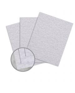 Parchtone Gunmetal Card Stock - 26 x 40 in 80 lb Cover Semi-Vellum 500 per Carton
