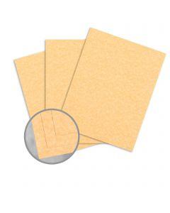 Parchtone Relic Gold Card Stock - 35 x 23 in 65 lb Cover Semi-Vellum 700 per Carton